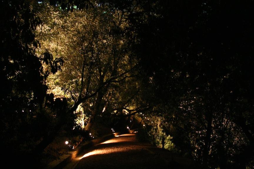 Treepeople Path 2008.JPG