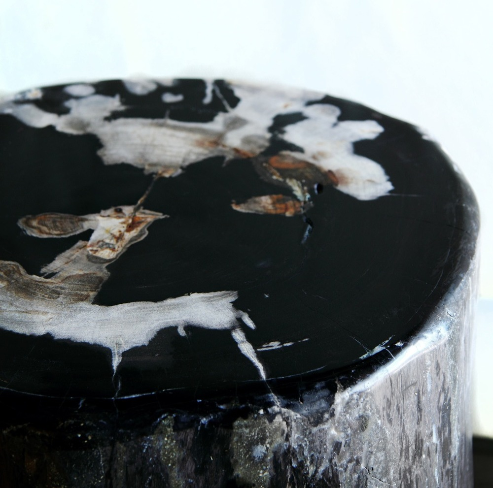 Petrified Wood Table (1)