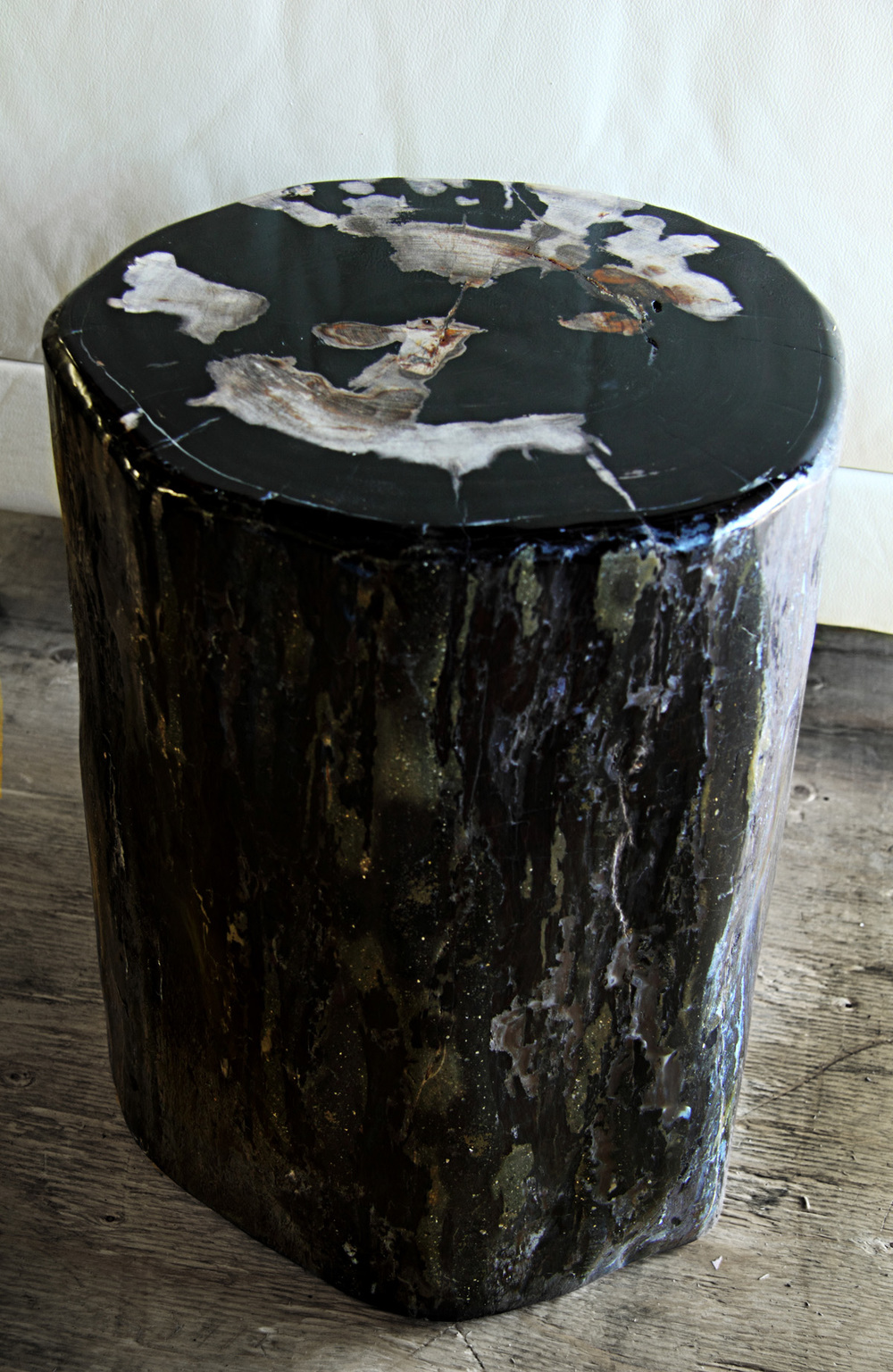 Petrified Wood Table (2)