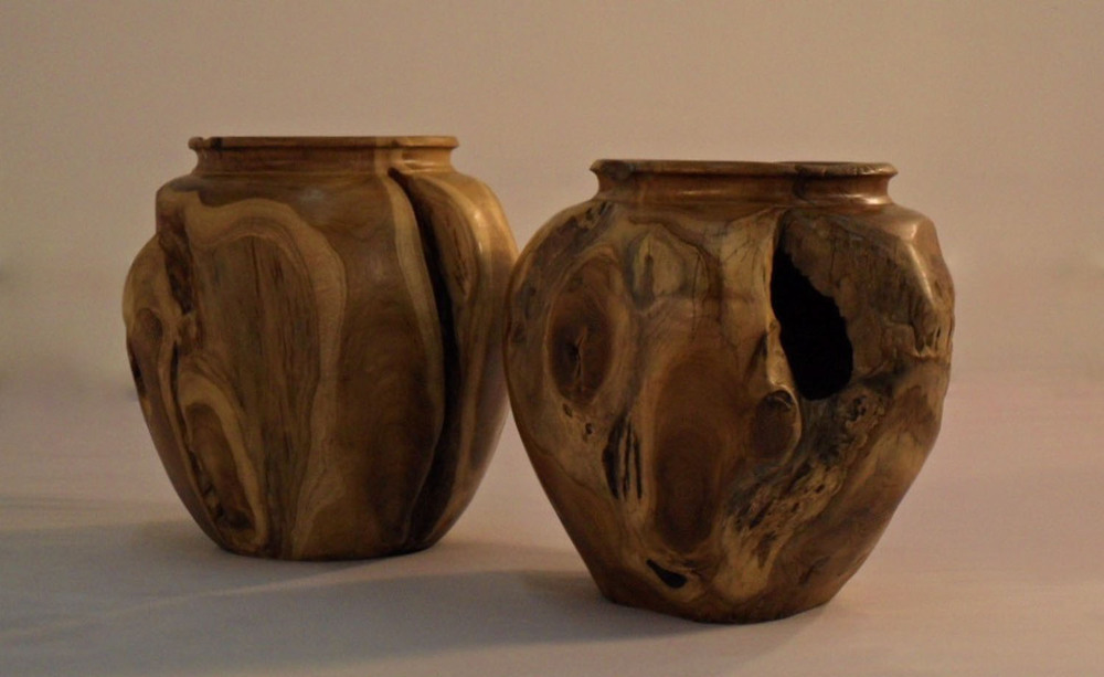 Organically Sculpted Teak Root Vase (1)
