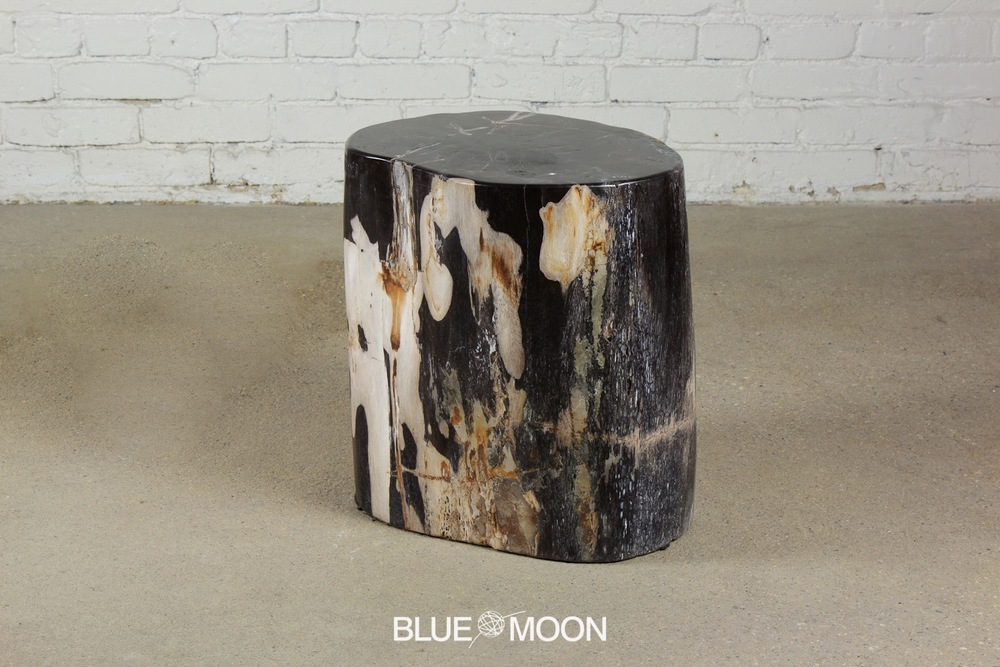 petrified wood stool /end table