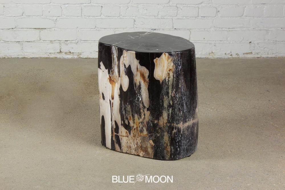 Copy of petrified wood stool /end table