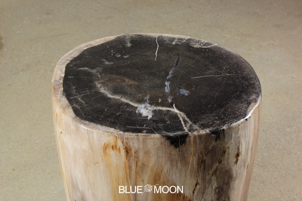 custom petrified wood furniture
