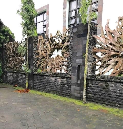 teak root fence, furniture