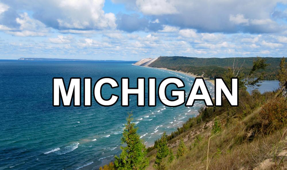 MichiganButton.jpg