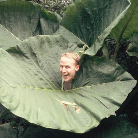farmers-greg-leaf.jpg