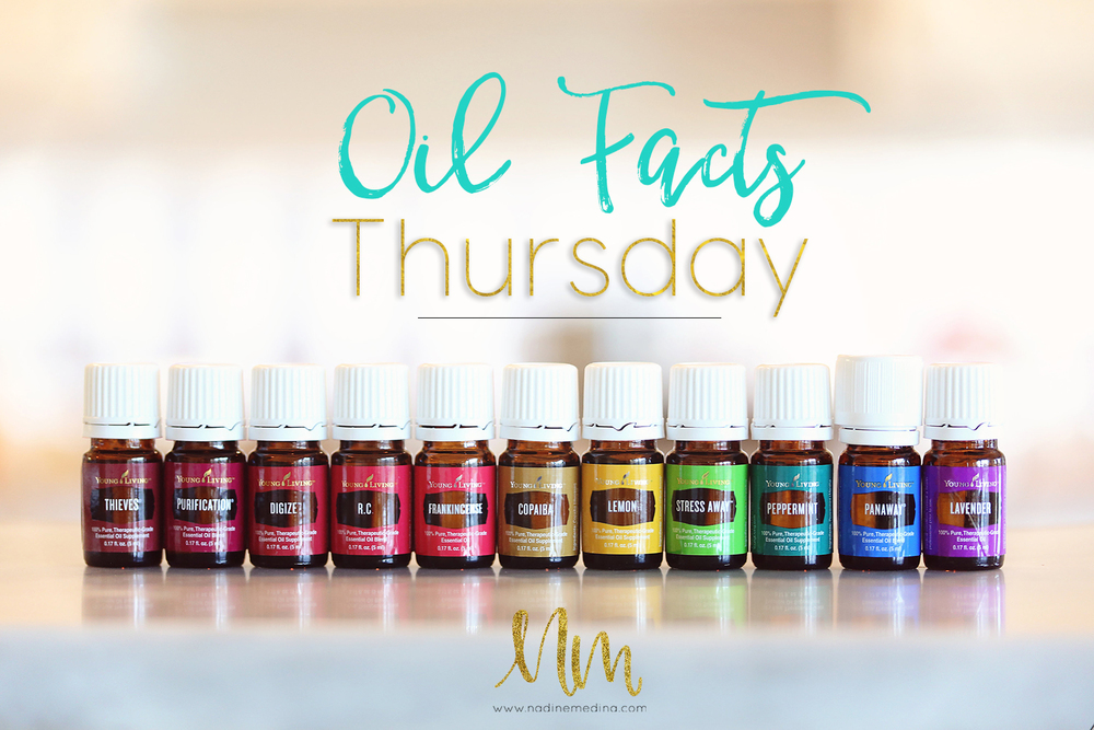 oil facts thursday mindblowing facts about essential oils