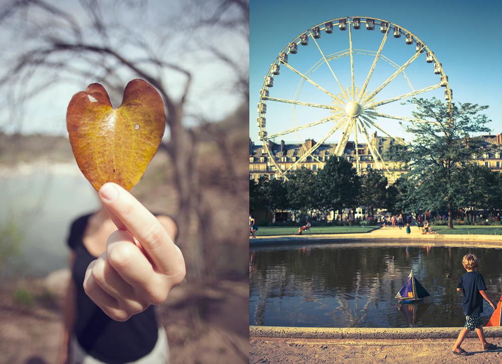 austin-paris-heartleaf.jpg