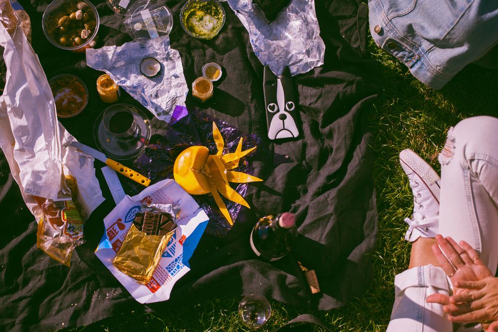 Amsterdam-picnic
