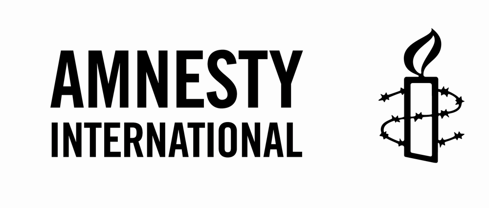 Amnesty International is a global movement of more than 3 million  supporters, members and activists in over 150 countries and territories  who campaign to end grave abuses of human rights.
