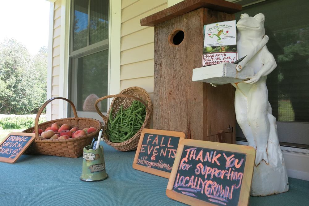 our farm stand is self-serve and features our freshly harvested fruits and vegetables!