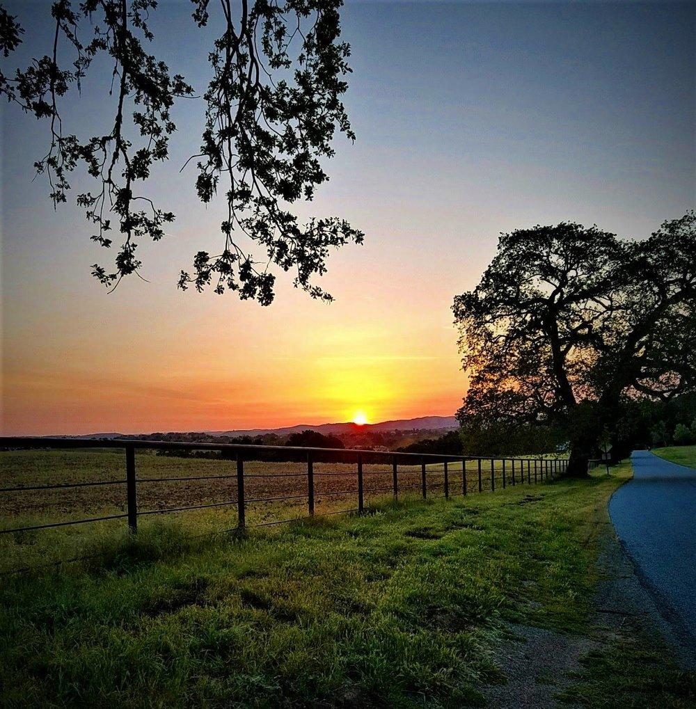 Templeton Sunrise   Photo Credit: Iain Beveridge