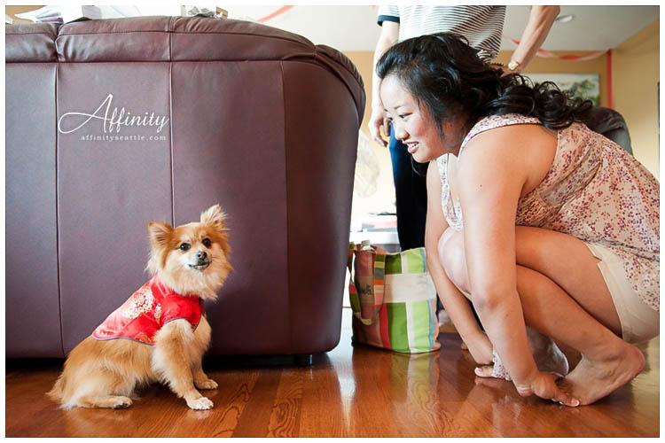 005-dressed-up-dog-for-wedding.jpg