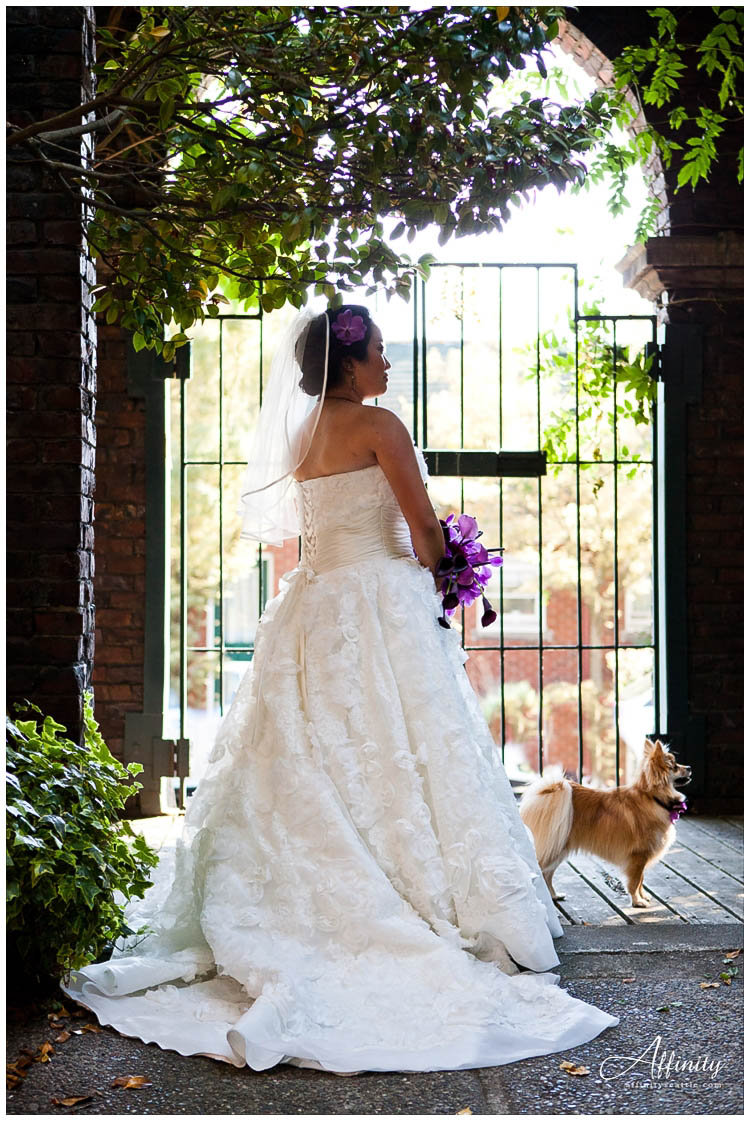 023-bride-with-dog-waiting.jpg