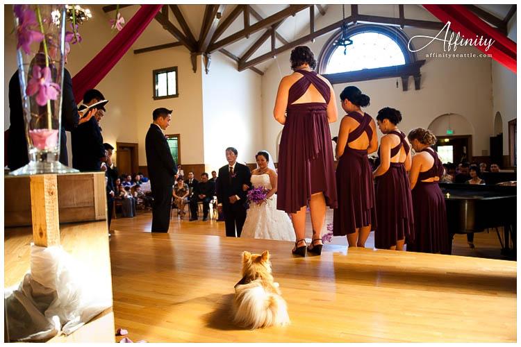 028-dog-wedding-ceremony.jpg