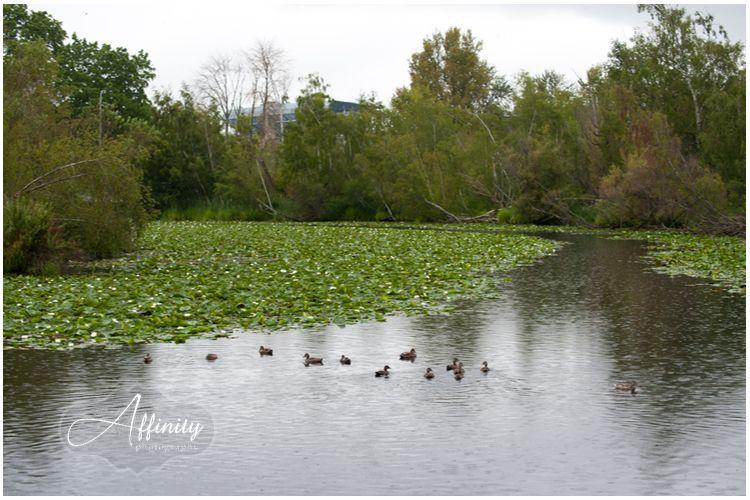 joel-katie-arboretum-affinity-photography-seattle-wedding-011.jpg