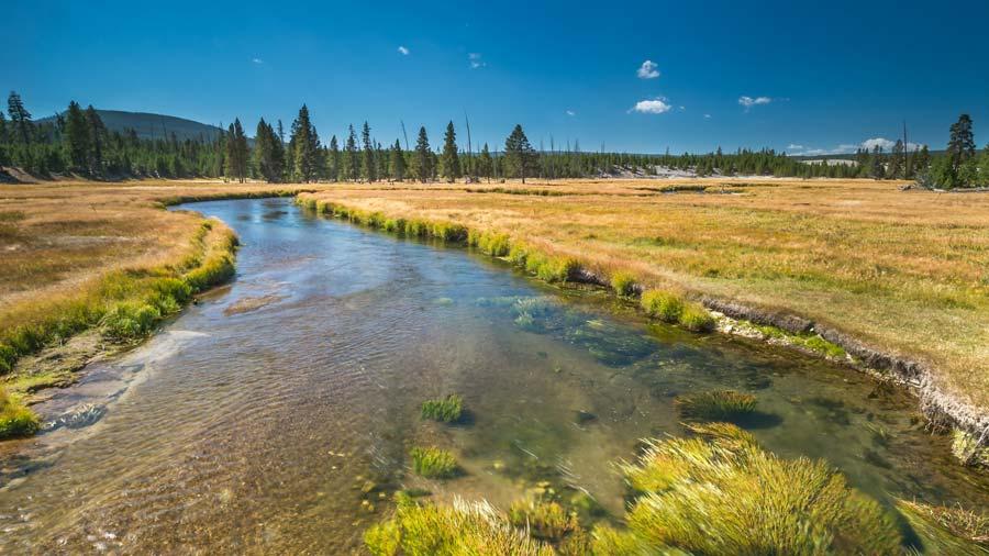 norris-river.jpg