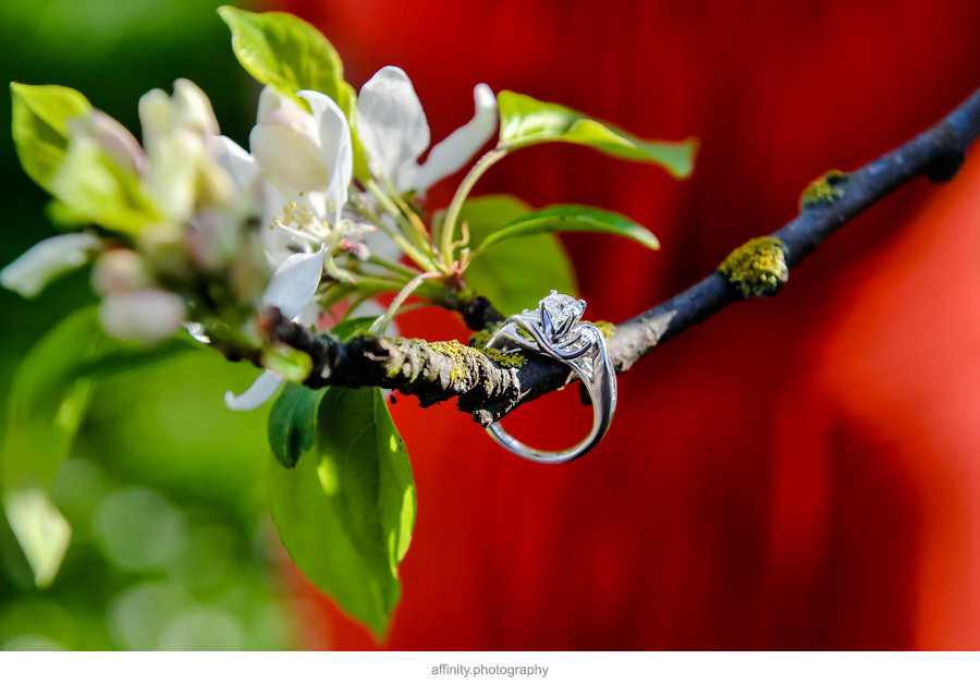 8-wedding-ring-cherry-blossom.jpg