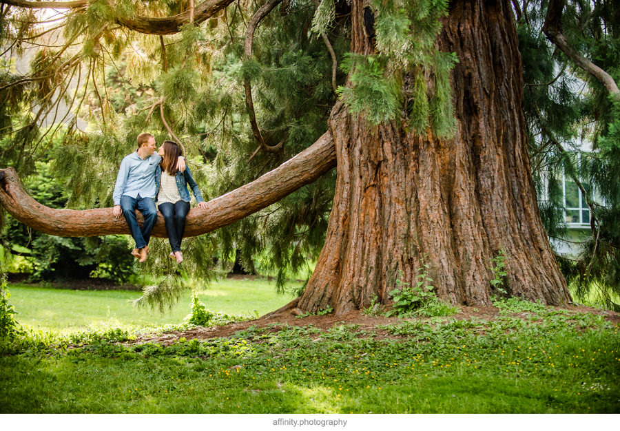 8-couple-sitting-on-tree-branch.jpg