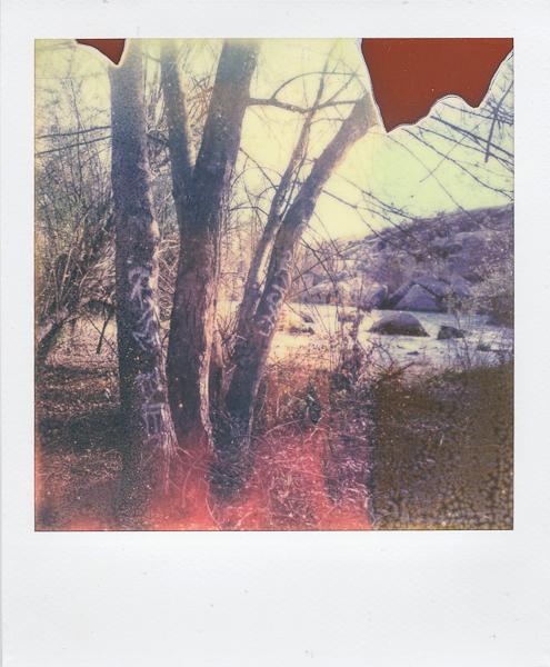 Polaroidsbook 11.jpg