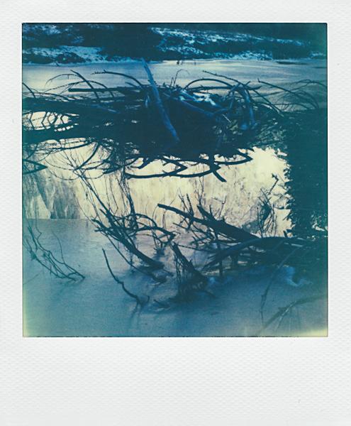 Polaroidsbook 437.jpg