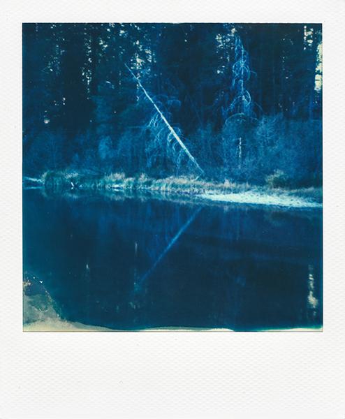 Polaroidsbook 290.jpg