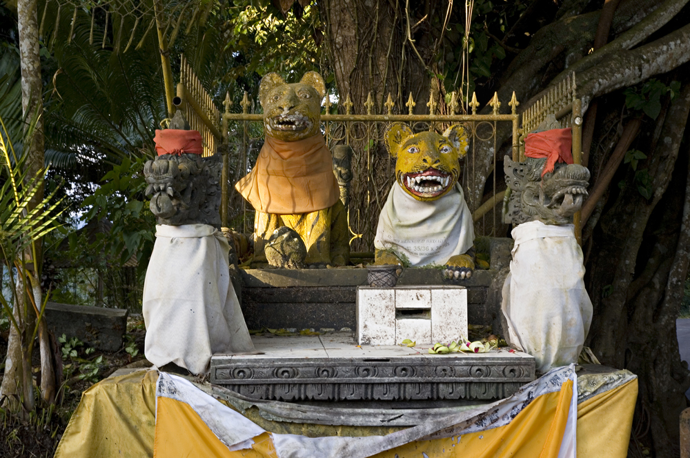 Roadside Altar, Indonesia 2009