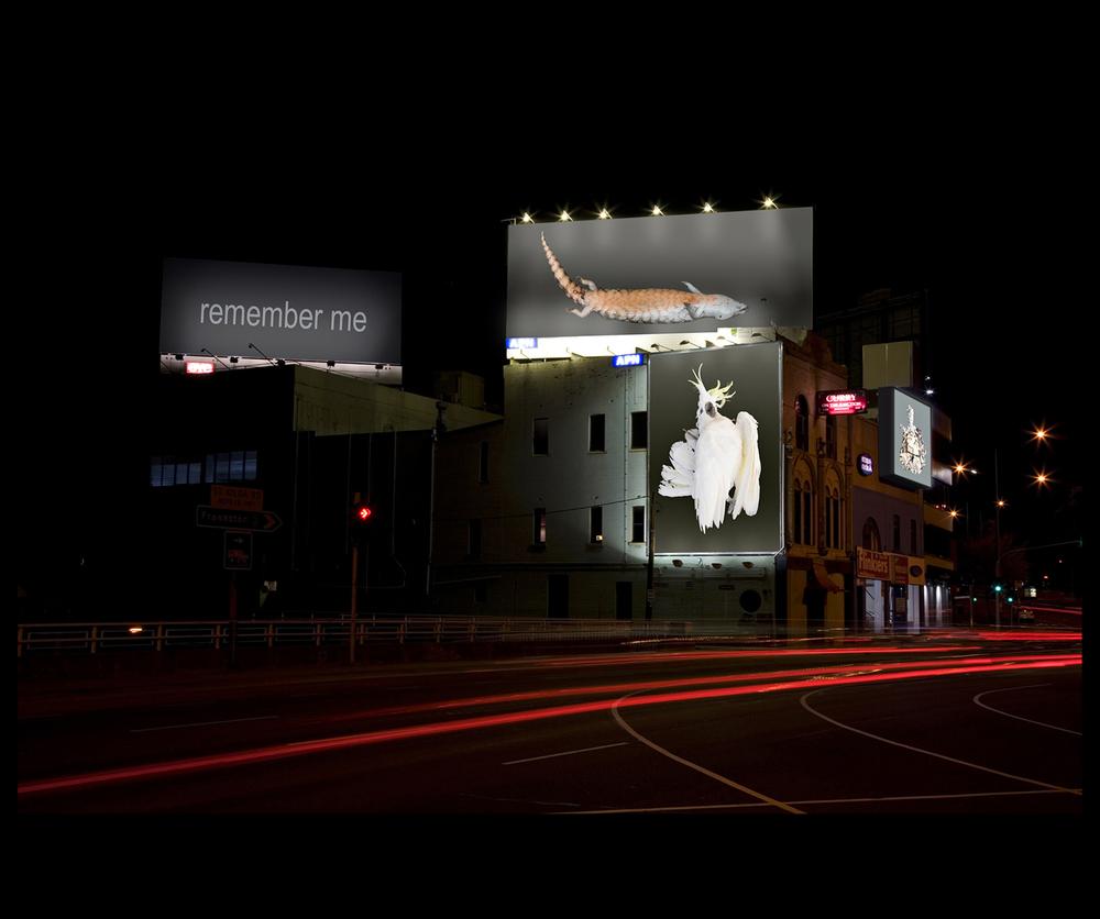 Terstappen_Billboard copy.jpg
