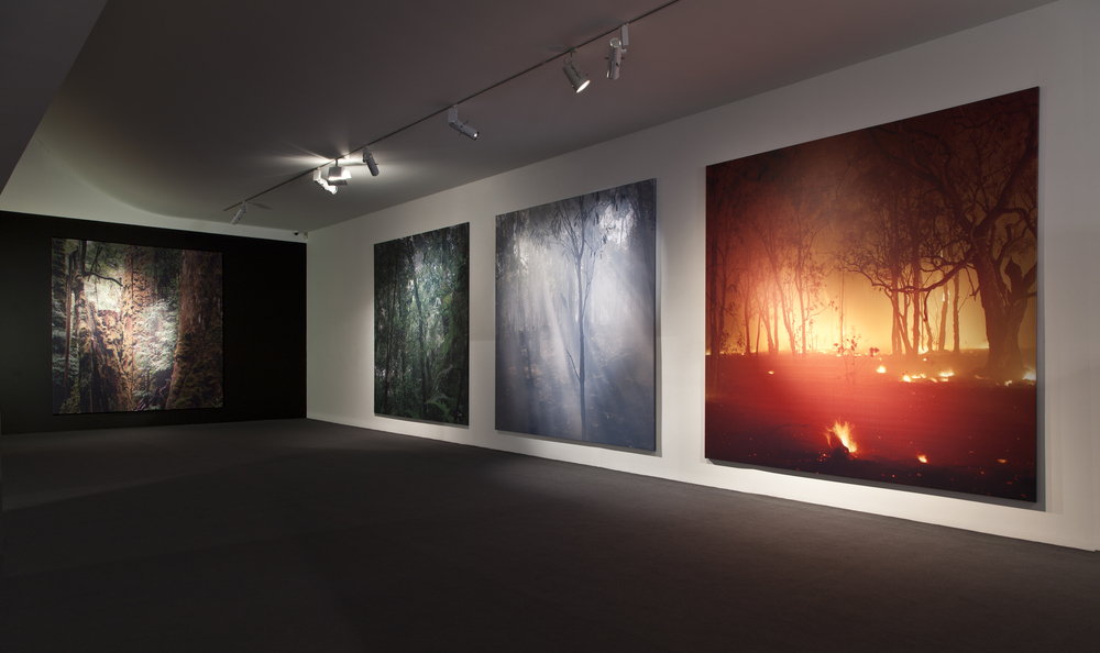 In the shadow of change; Monash Gallery of Art, 2014, photographs each 3 x 3m