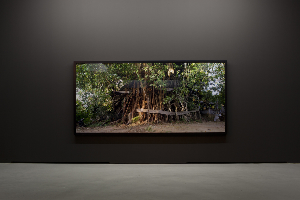 Ritual, death and incantation; here: Holy Tree 2011, 150 x 320 cm; collection Museum DKM, Duisburg/Germany