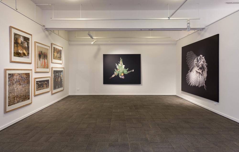 A language of the vanishing, LUMA (Melbourne),installation shot 2016