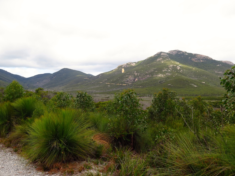 The spectacular Mount Oberon. Photo: Cathy Cavallo