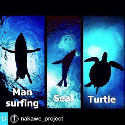 Note the similarities in the silhouettes. Image courtesy of @nakawe_project.