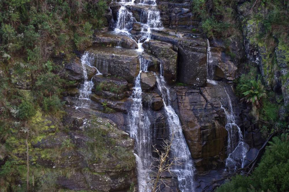 The beautiful Masons Falls. Photo: Cathy Cavallo   Author note: After recent heavy rainfall, Masons Falls are now cascading with much more water than in the photos above. This is a remarkable spectacle that is worth a trip!