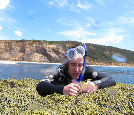 Snorkeling along the Bellarine Peninsula, Victoria. Image: Stephen McGain