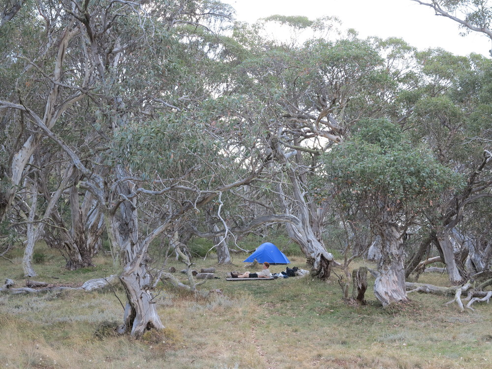The campsite at Mt Magdala. Image courtesy of Alex Mullarky .