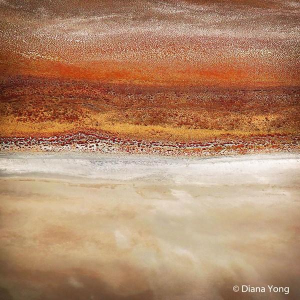 Jupiter. Image: Diana Yong