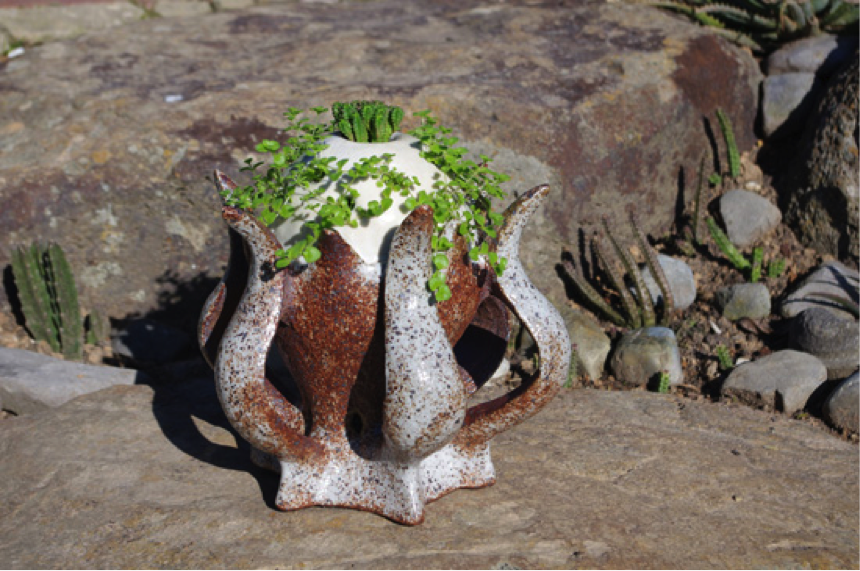 The clay pots of  Jack Latti  are influenced by the shapes, sizes and colours of the plants they will contain.