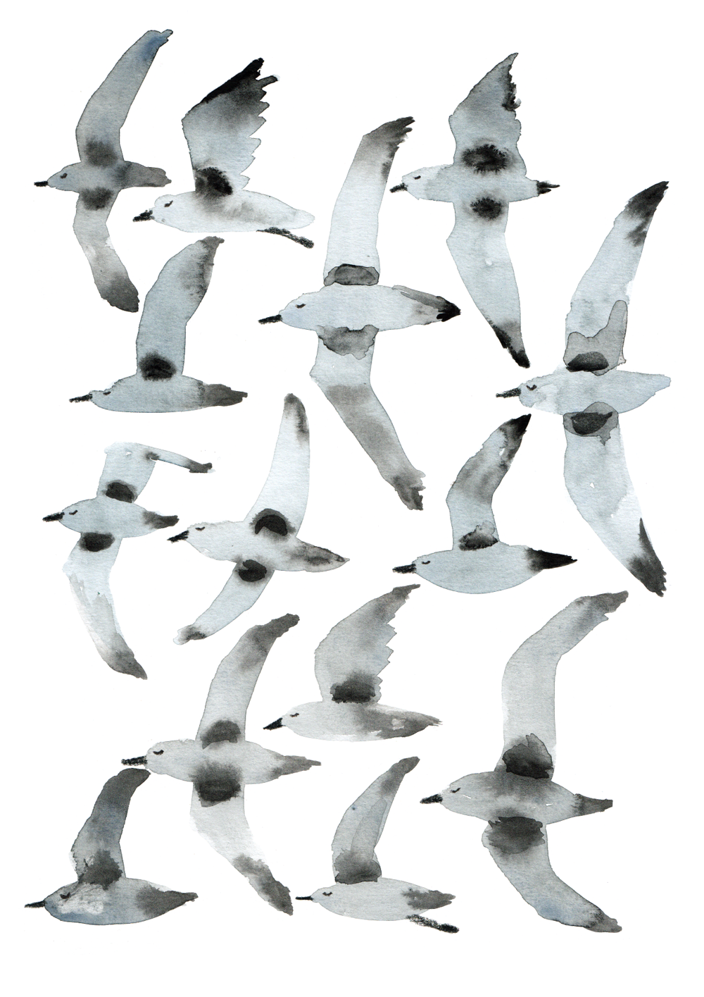 Marc's work often demonstrates a particular focus on bids, as shown by this piece titled 'Plovers'.  Image: Marc Martin