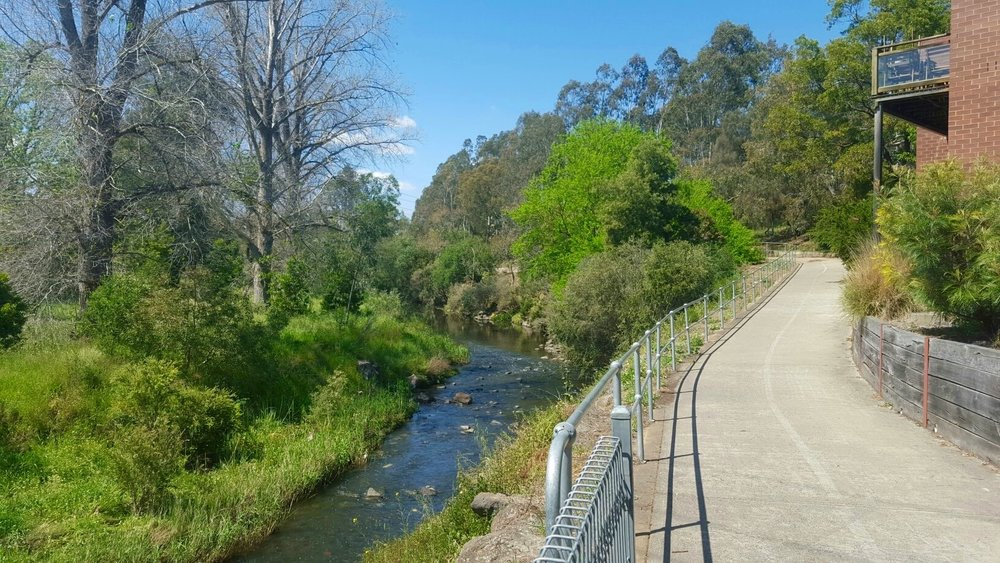 A snapshot of the interesting Merri Creek Trail. Image: Cathy Cavallo.