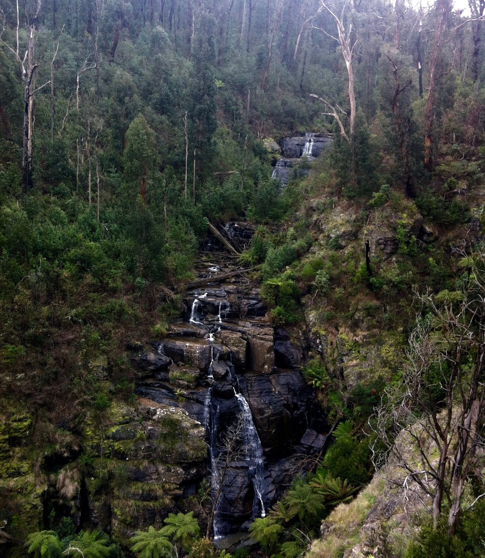Mason Falls, Kinglake West. Photo - Ella Kelly