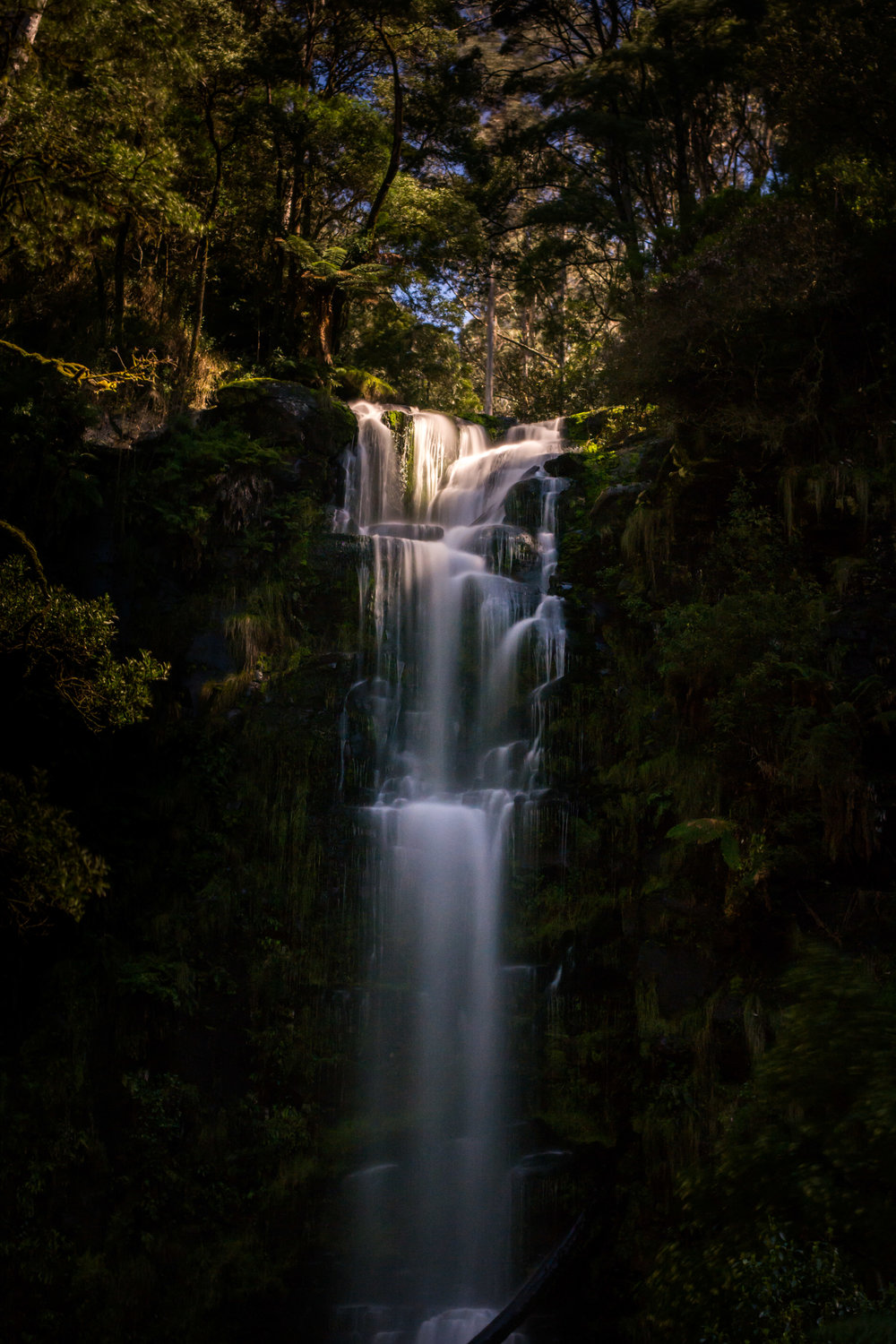 Erskine Falls, Lorne. Photo: Tim Brown