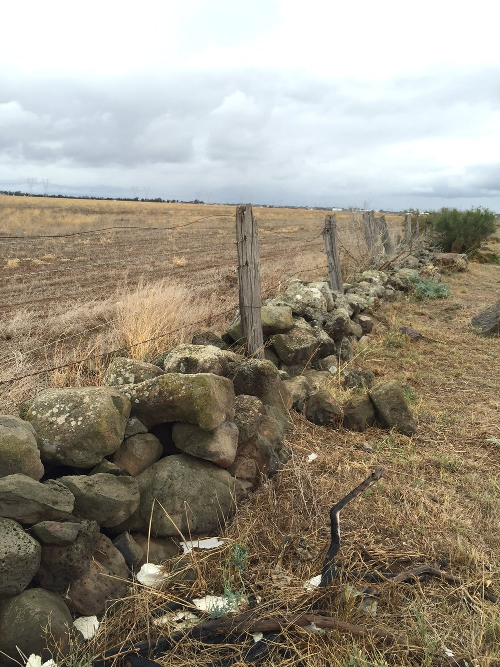 A dry stone wall is protected by a local council planning clause.  Image: Louise Nicholas