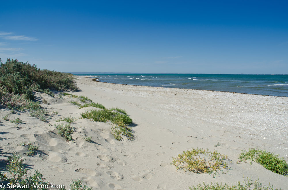One of the bright beaches of Mud Islands. Image: Stewart Monckton