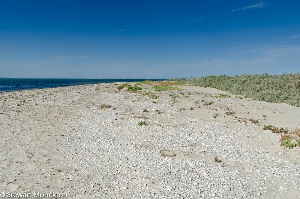 The beach on Mud Islands. Image: Stewart Monckton