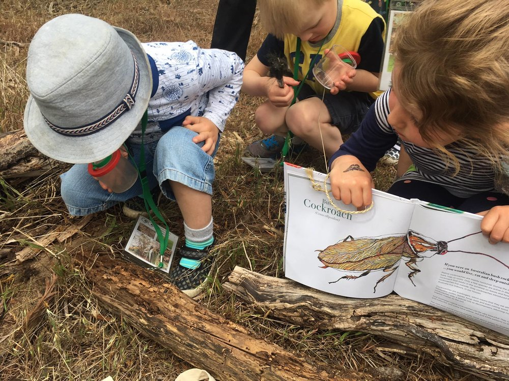 The book is already being used by children in school or during outdoor education activities.  Image: City of Melbourne