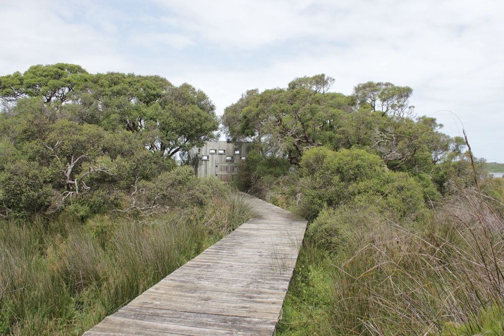 The bird hide along the boardwalk.  Image: Elodie Camprasse