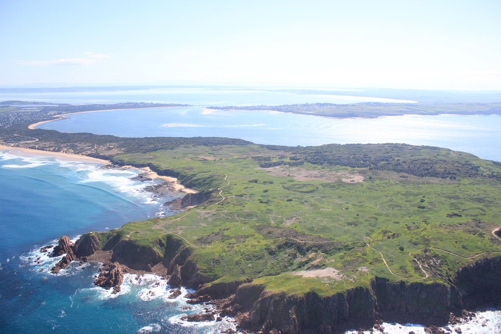 An aerial photo of Cape Woolamai featuring the Pinnacles on the left-hand side.  Image: Elodie Camprasse