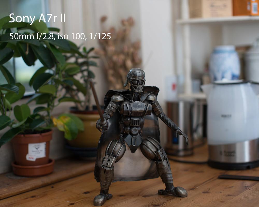 Sony A7rII.jpg