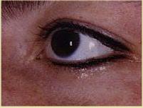 left eye upper and lower liner